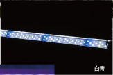 web_products_led_wb_03.jpg